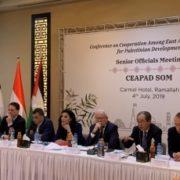パレスチナ開発のための東アジア協力促進会合高級実務者会合の様子